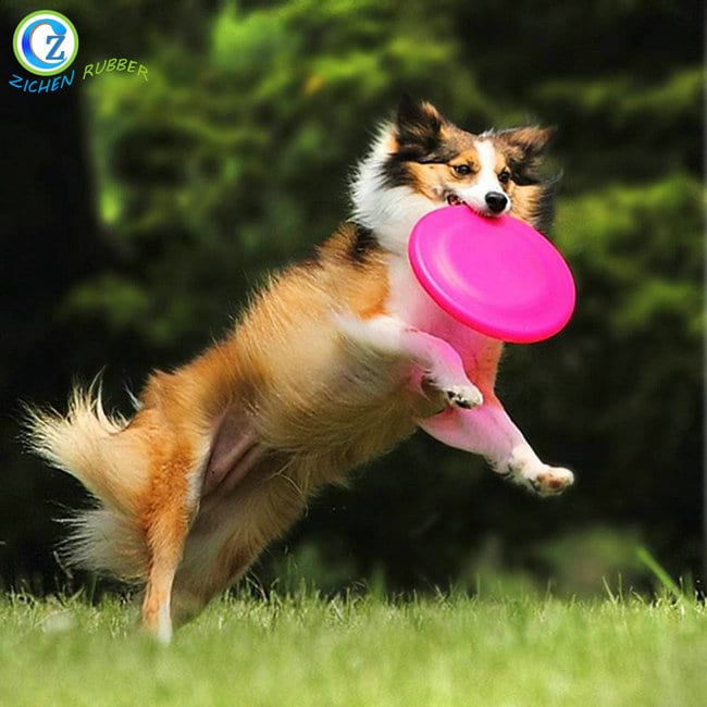 Chinese Professional Extruded Rubber Seal -